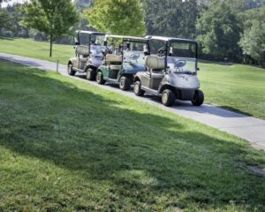 Golf carts on the golf course