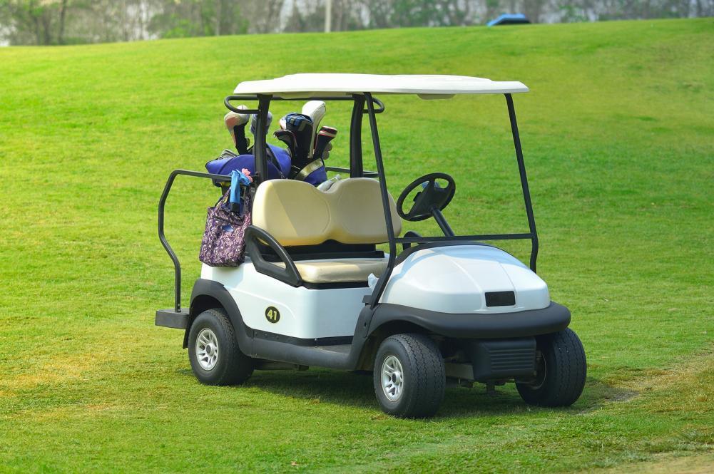Gas golf cart.